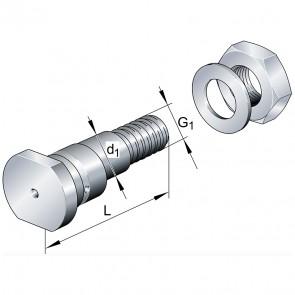 Эксцентрические цапфы LFE30x95-A1